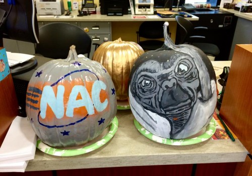Pumpkin Contest for Greenfield Savings Bank